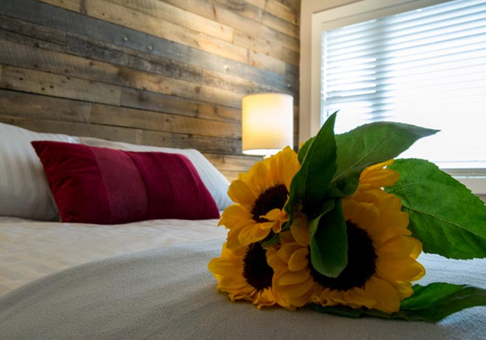 Sunflowers on bed with red pillow